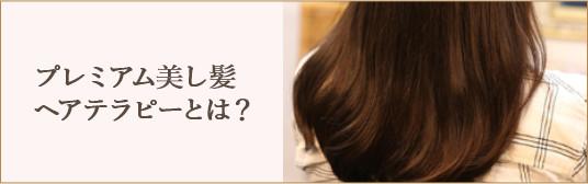 プレミアム美し髪ヘアテラピーとは?